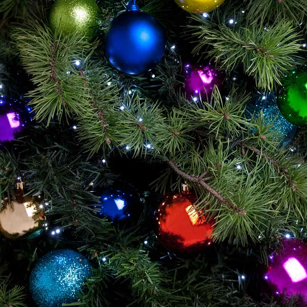 Christmas trees with multi-coloured decorations supplied by eco office plants