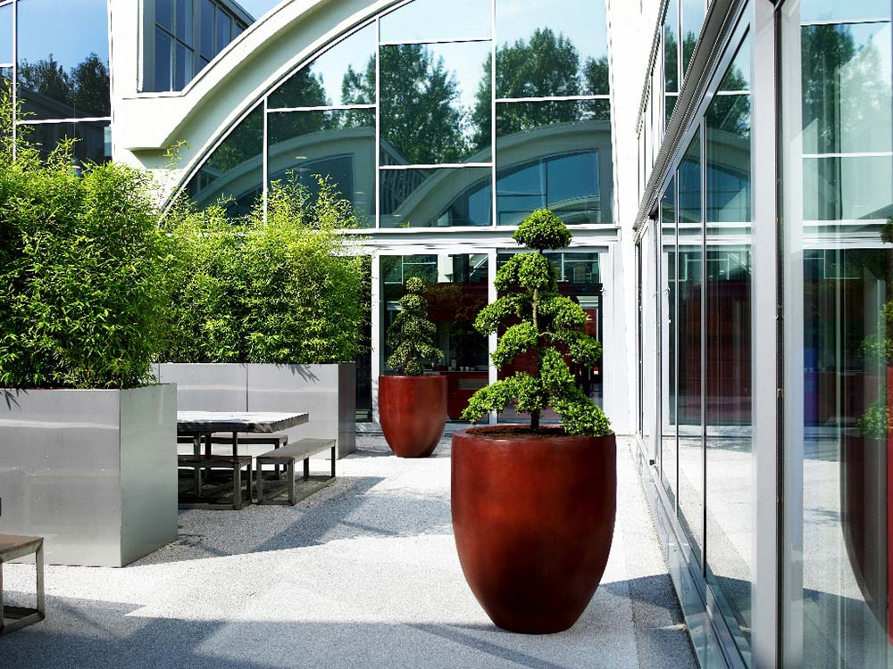 Exterior plants and landscaping with eco office plants