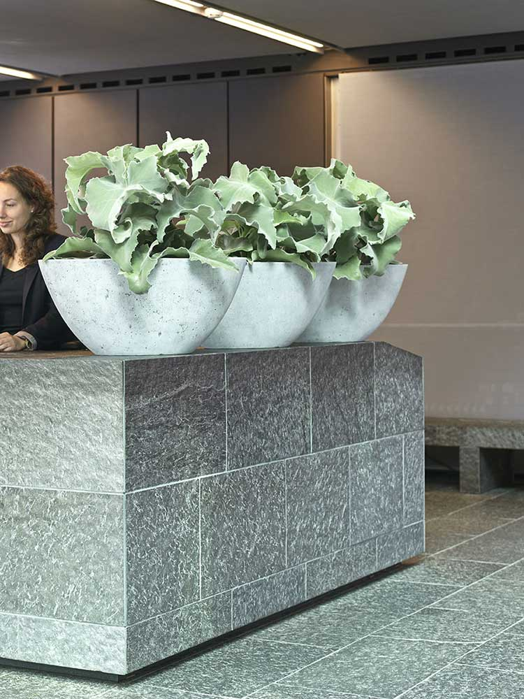 Extra large reception planters
