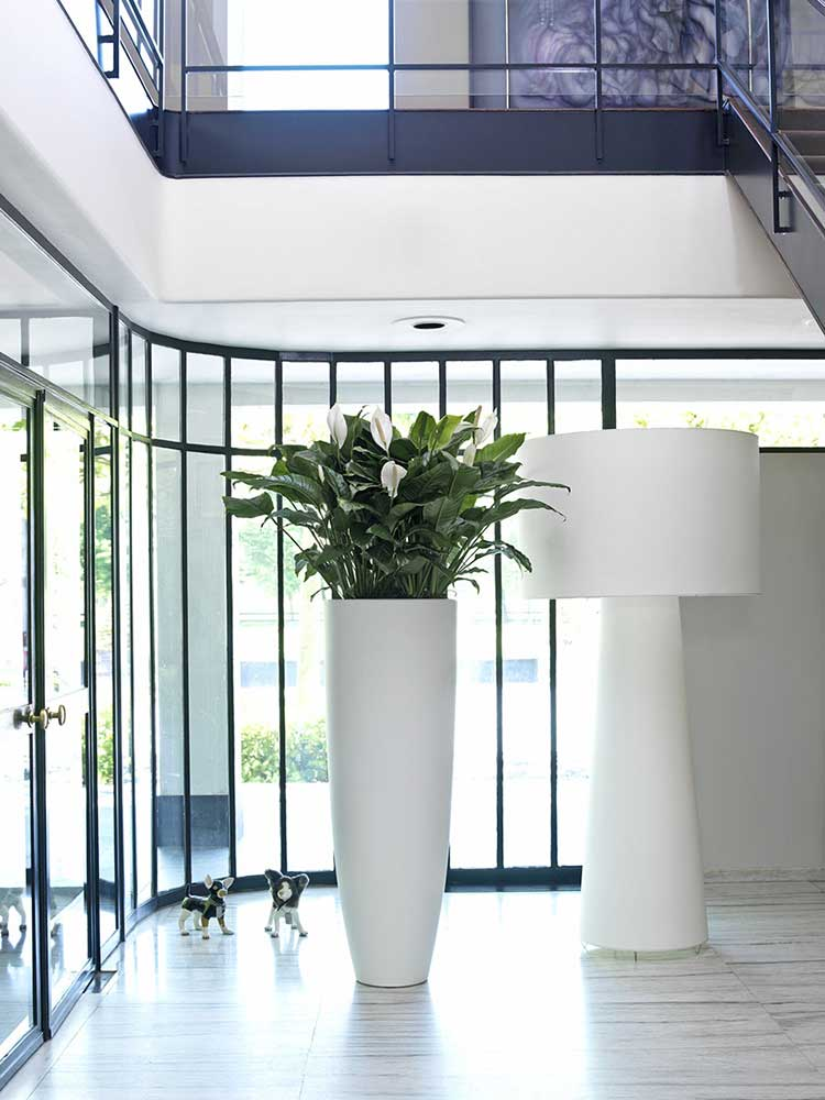 Tall office planter with eco office plants